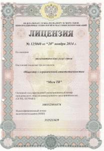 Litsenzia_na_Internet-page-001
